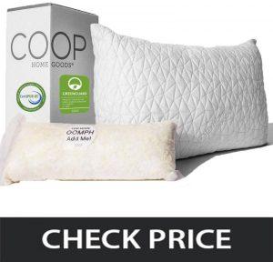 Coop-Home-Goods-Loft-Pillow